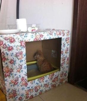 自制纸箱猫别墅设计图